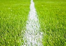 Streifen auf Gras Stockfotos