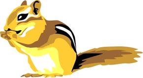 Streifenhörnchen Stockfoto