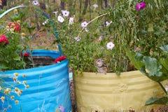 Streifenhörnchen in einem Blumenbeet Lizenzfreie Stockbilder
