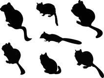 Streifenhörnchen-Schattenbild-Tier-Clipart Stockfotos