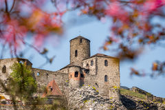 Strekov Castle Stock Photography