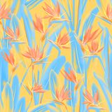 Strelitzia reginae kwiatu tropikalny wektor bezszwowy ilustracja wektor