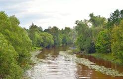 Strelka River at summer. Royalty Free Stock Photos