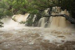 Streng geschwollenes unteres Twin Falls Stockfotografie