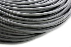 Streng van een grijze netwerkkabel Stock Foto's