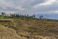 Strenge schade van aardbeving en vloeibaarmakings natuurrampen stock afbeelding