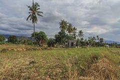 Strenge schade van aardbeving en vloeibaarmakings natuurrampen stock fotografie
