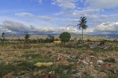 Strenge schade van aardbeving en vloeibaarmakings natuurrampen stock foto