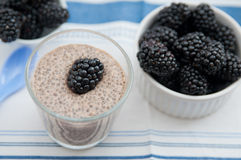 Strenger Vegetarier Chia Seed Pudding lizenzfreie stockbilder
