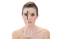 Strenges natürliches braunes behaartes Modell, das eine Augenbrauenbürste hält Stockbild
