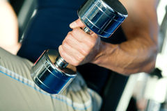 Strength and dumbbell Stock Photography