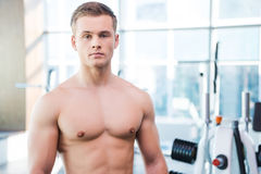 Strength and masculinity. Confident young muscular man looking at camera while standing in gym Stock Photos