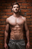 Strength and masculinity. Handsome young muscular man posing while standing against brick wall Stock Images
