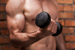 Strengthening his biceps. Royalty Free Stock Photography