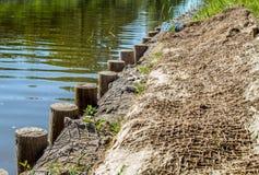 Strengthening shore line Stock Image