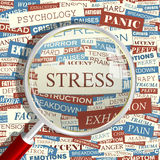 STRESS. Concept related words in tag cloud. Conceptual info-text graphic. Word collage Royalty Free Stock Images
