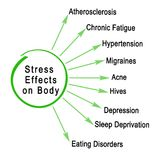 Stress Effects on Body. Negative Stress Effects on Body Stock Image