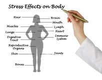 Stress Effects on Body. Woman presenting Stress Effects on Body royalty free stock photos