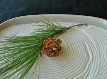 Mini zen garden with white sand and symbols of the winter holiday season: pine cone and green branch. Royalty Free Stock Images