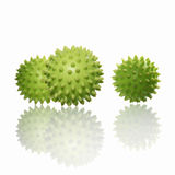 Stress/massage ball Royalty Free Stock Photography