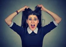 stress A mulher forçada está indo louca puxando seu cabelo na frustração foto de stock