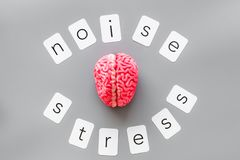 Stress and noise text with brain for psychological health in office concept on graybackground top view. Stress and noise text with brain for psychological health royalty free stock photos