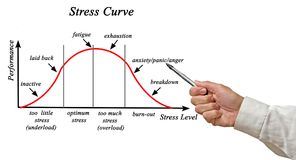 Stress and Performance Curve. Presenting Stress and Performance Curve Royalty Free Stock Photos