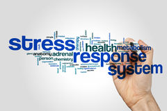 Stress response system word cloud concept. Stress response system word cloud on grey background Royalty Free Stock Photography