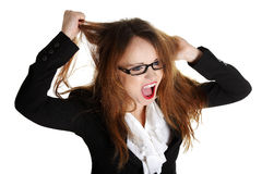 Stressed business woman is going crazy. Pulling her hair in frustration Royalty Free Stock Image