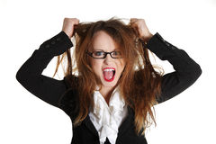 Stressed business woman is going crazy. Pulling her hair in frustration Stock Image