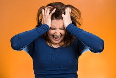 Stressed business woman, pulling her hair out Stock Image