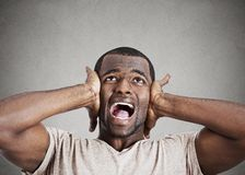 Stressed man squeezing his head, going nuts, screaming Stock Photography