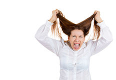 Stressed woman pulling her hair out with temper Royalty Free Stock Photography