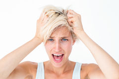Stressed woman screaming and holding her head Stock Images