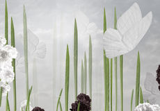 streszczenie tło do formatu motyla pocztówkę kwiecista pasuje do wektora - Zdjęcie Royalty Free