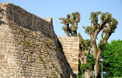 Stretch of ancient walls with poplar in Monselice town in the province of Padua in the Veneto (Italy) Stock Photography