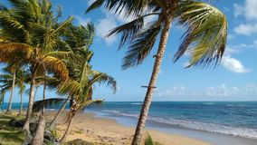 A stretch of beach in Puerto Rico  Royalty Free Stock Images