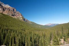 A stretch of Forest. Endless forest stretching towards the Rocky Mountains in Alberta, Canada Stock Photography