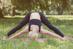 Stretch in the Park Royalty Free Stock Image