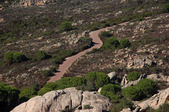 Stretch of road on island of Caprera Royalty Free Stock Image