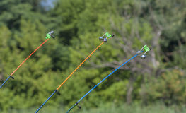 Stretched fishing line of fishing rod Royalty Free Stock Photo
