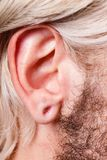 Stretched man ear after tunnel piercing stock photo