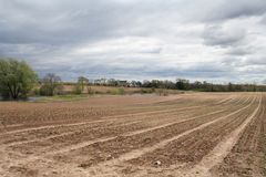 New plantings stretched out on a Large farm at the Long Islands East End Stock Photos