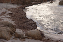 Stretches of sea and beach. Whether sea beach and cliff of Sardinia Royalty Free Stock Photos