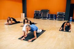 Female yoga group, training with instructor. Stretching exercise, female yoga group, training with instructor, workout in gym. Yogi indoor Stock Photography