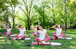 Stretching group Stock Images
