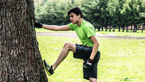Stretching with a tree Royalty Free Stock Photo