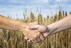 Stretta di mano degli agricoltori sopra il raccolto del grano Immagini Stock