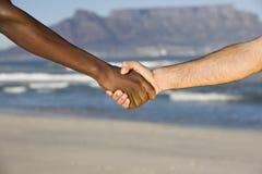 Stretta di mano multietnica alla spiaggia della montagna della Tabella Immagine Stock