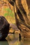 Stretti calmi del fiume del Virgin del raggruppamento Fotografia Stock